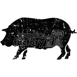 distressed pig vector art