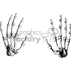 William Cheselden vector hand anatomy art